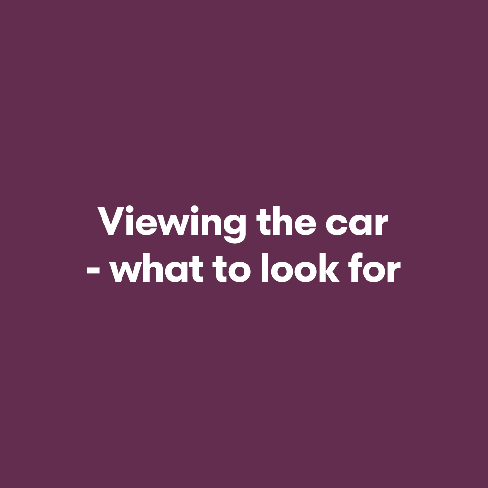 Viewing-the-car.png